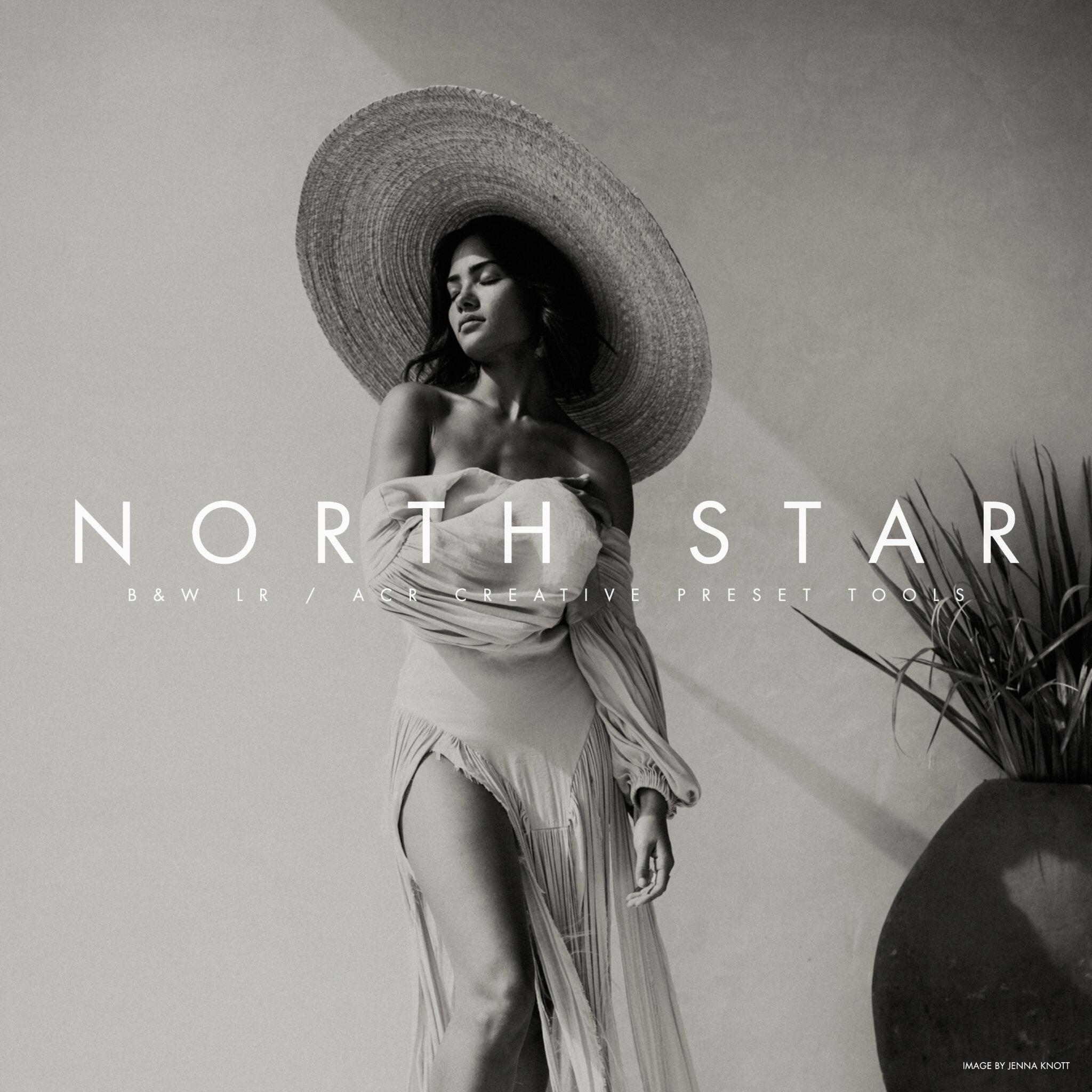 Archipelago - NORTH STAR B+W LR/ACR PRESETS + PROFILES