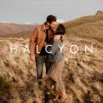 Archipelago HALCYON LR/ACR PRESETS + PROFILES