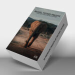 Michiel Pieters Preset Pack For Lightroom